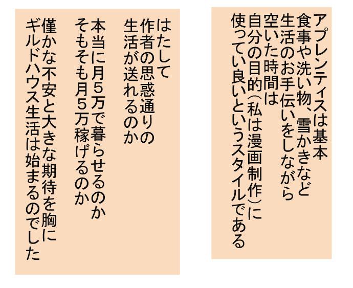 f:id:nanashinosakusya:20170105220936j:plain