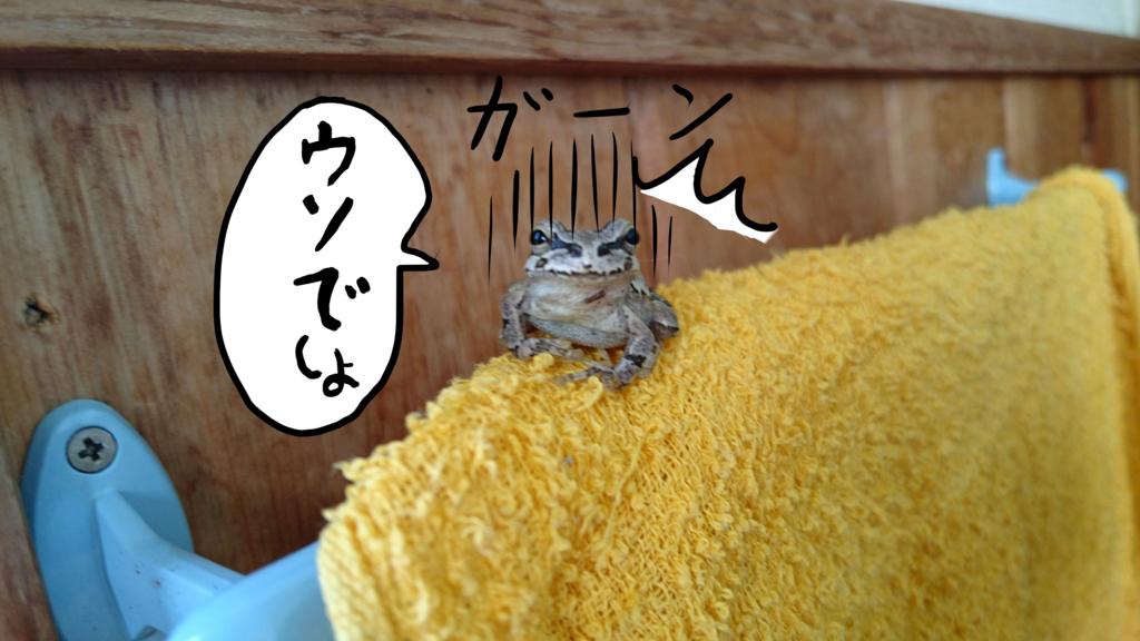 f:id:nanashinosakusya:20170811221023j:plain