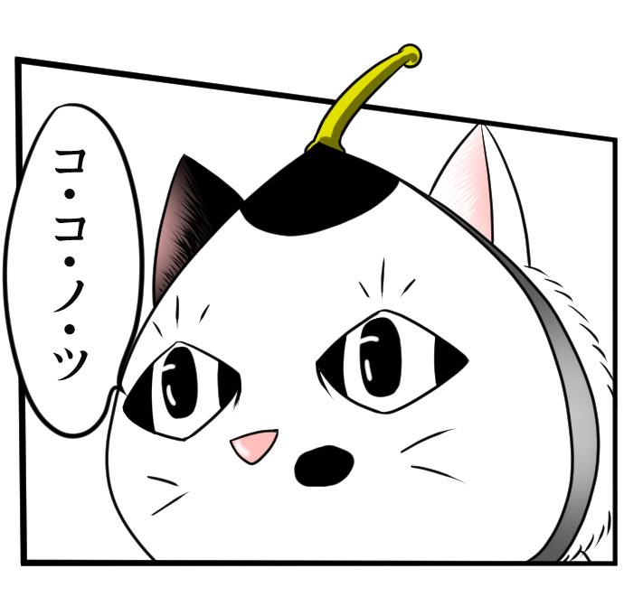 f:id:nanashinosakusya:20190225191422j:plain