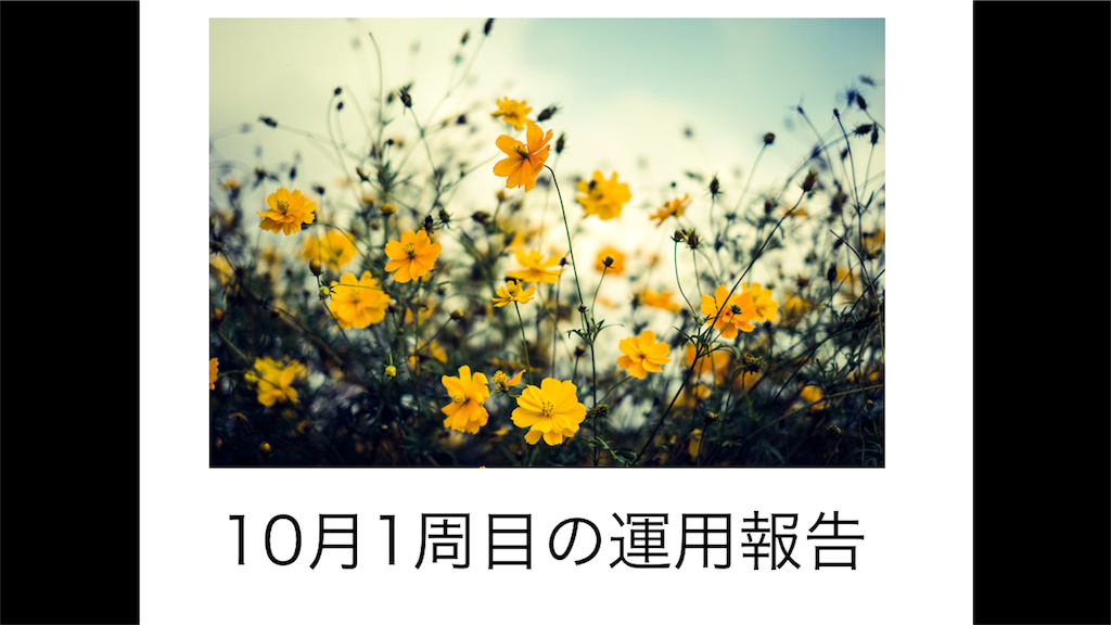 f:id:nanasi36925:20181008201851p:image