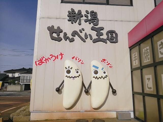 f:id:nanatoto:20190702213357j:image