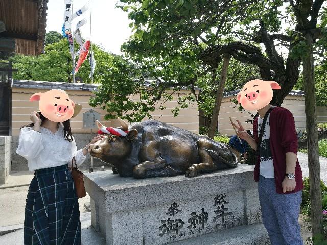 f:id:nanatoto:20190814234707j:image