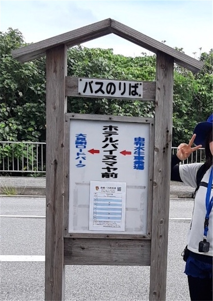 f:id:nanayzu7:20201204190852j:image