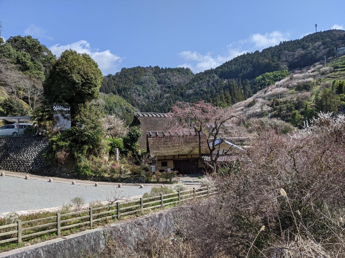 f:id:nanbo-takayama:20210315101206j:plain