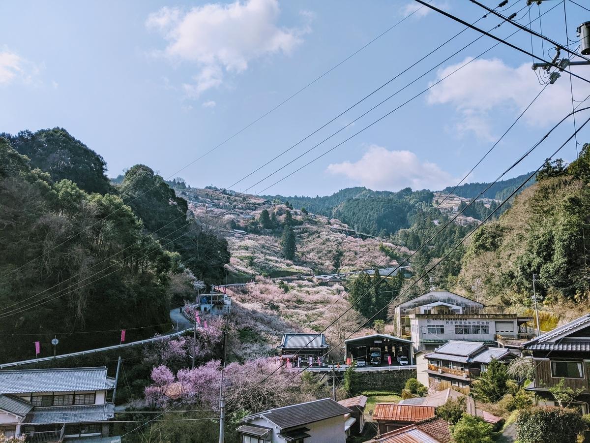 f:id:nanbo-takayama:20210315195350j:plain