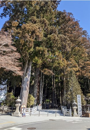f:id:nanbo-takayama:20210328164341j:plain