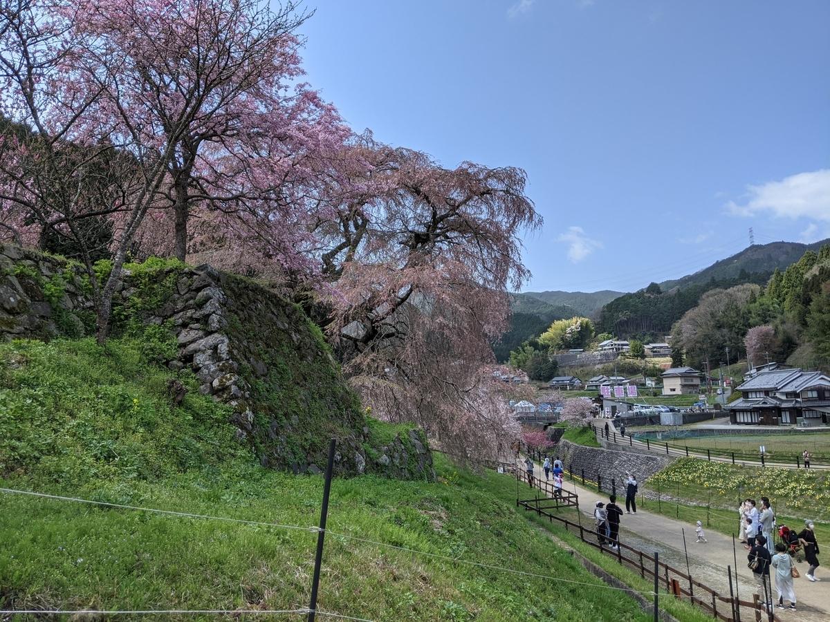 f:id:nanbo-takayama:20210402194748j:plain