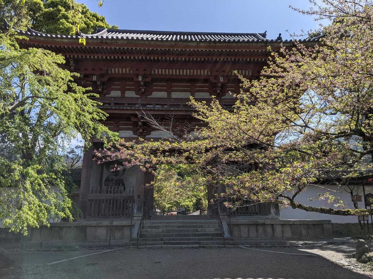 f:id:nanbo-takayama:20210501130333j:plain