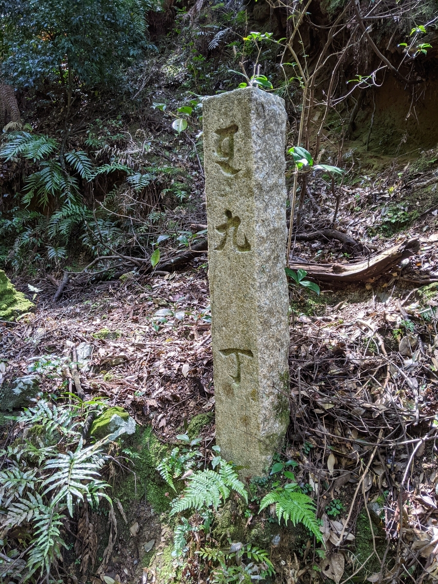 f:id:nanbo-takayama:20210501223129j:plain