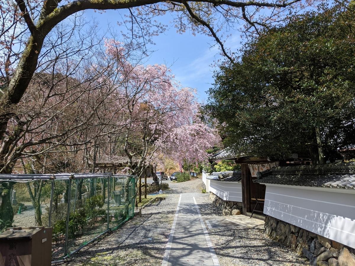 f:id:nanbo-takayama:20210505164300j:plain