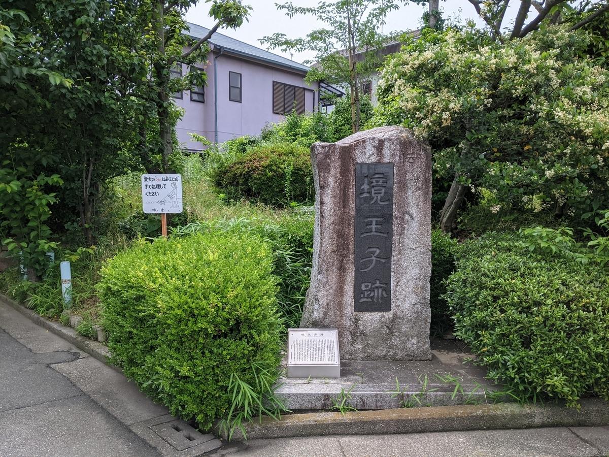 f:id:nanbo-takayama:20210529134042j:plain