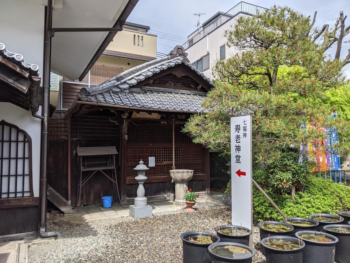 f:id:nanbo-takayama:20210530133211j:plain