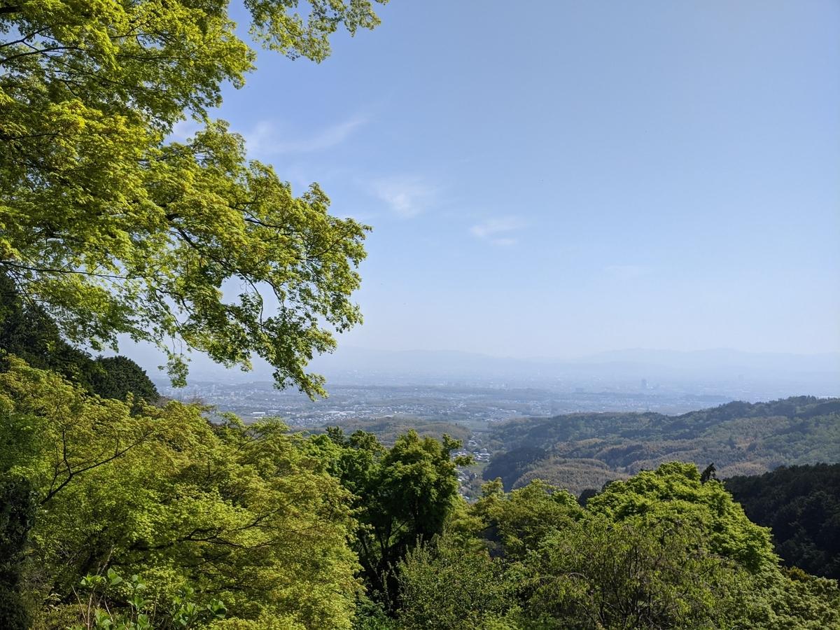 f:id:nanbo-takayama:20210603191512j:plain