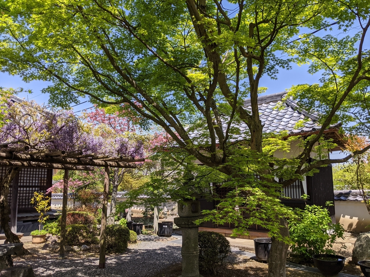 f:id:nanbo-takayama:20210605153345j:plain