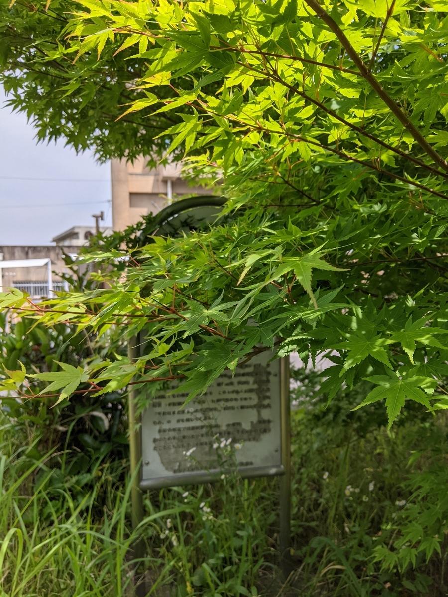 f:id:nanbo-takayama:20210612140950j:plain