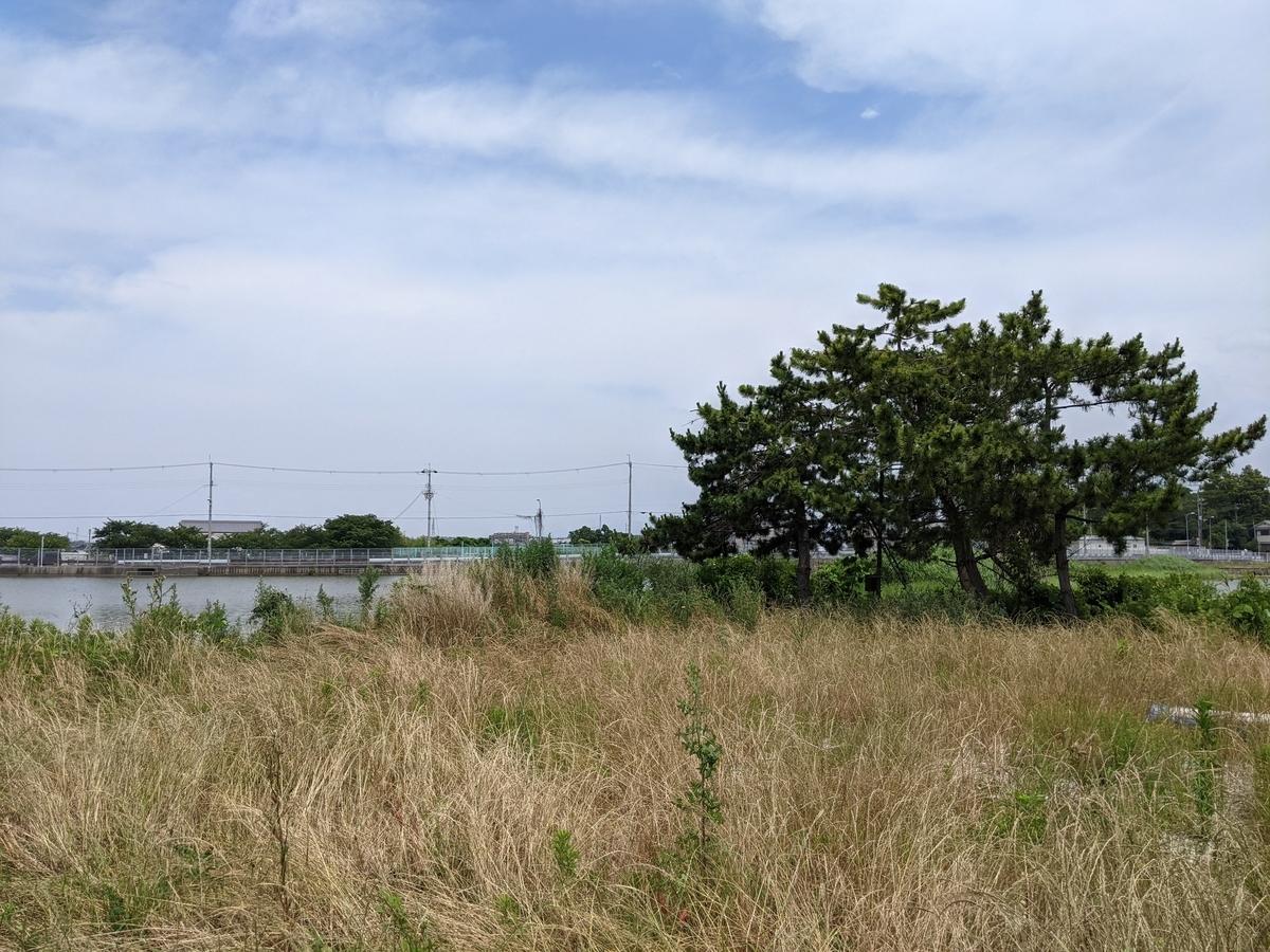 f:id:nanbo-takayama:20210612213227j:plain