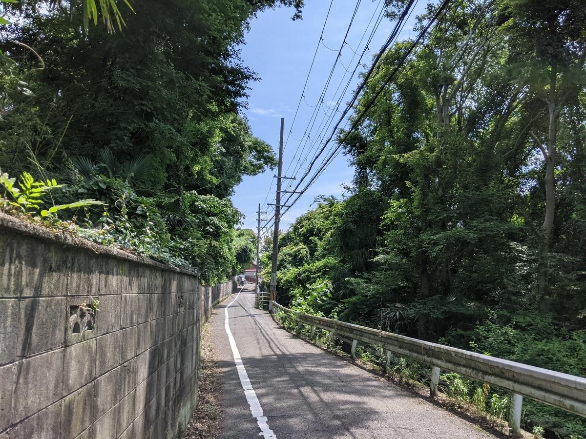 f:id:nanbo-takayama:20210613093405j:plain