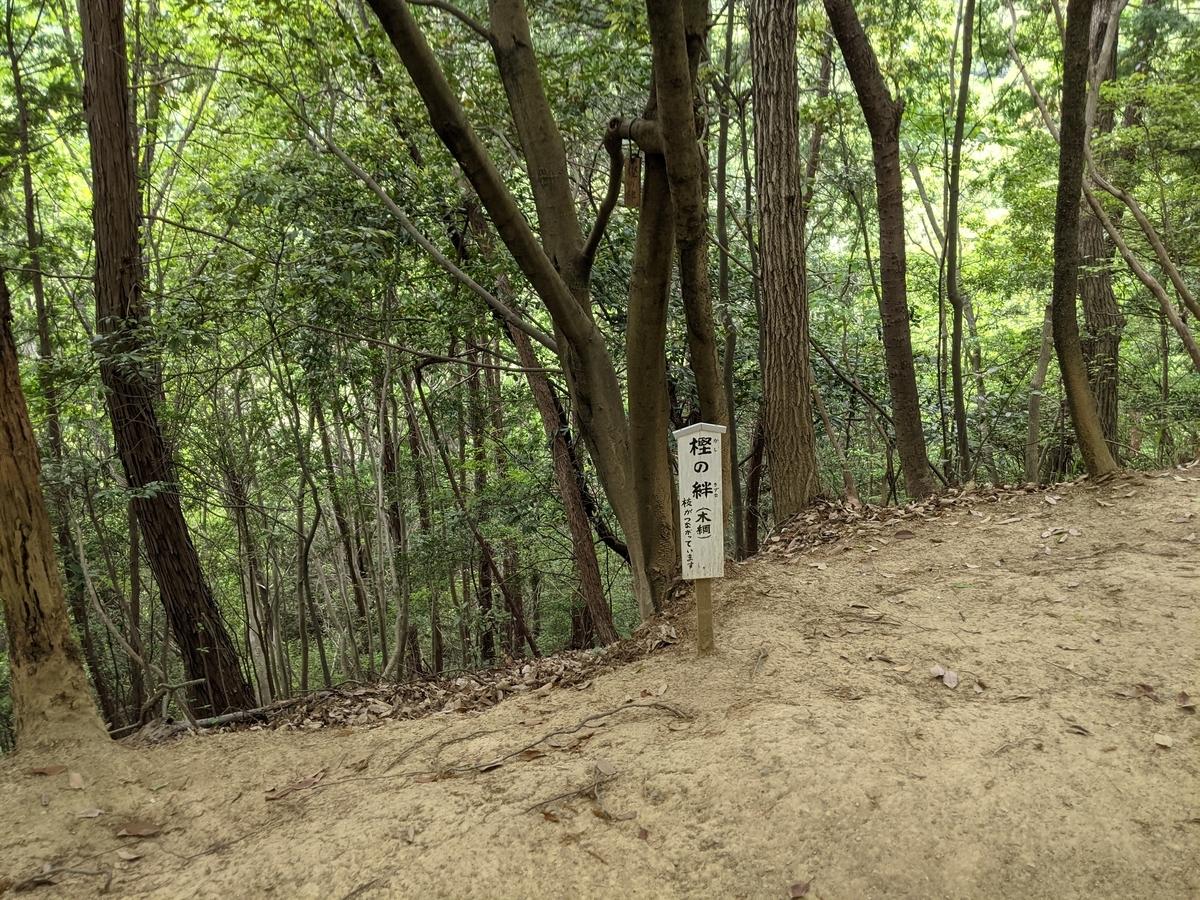 f:id:nanbo-takayama:20210618190508j:plain