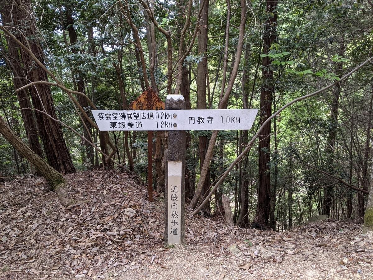 f:id:nanbo-takayama:20210619091415j:plain