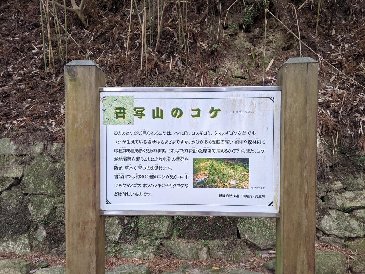 f:id:nanbo-takayama:20210619101223j:plain