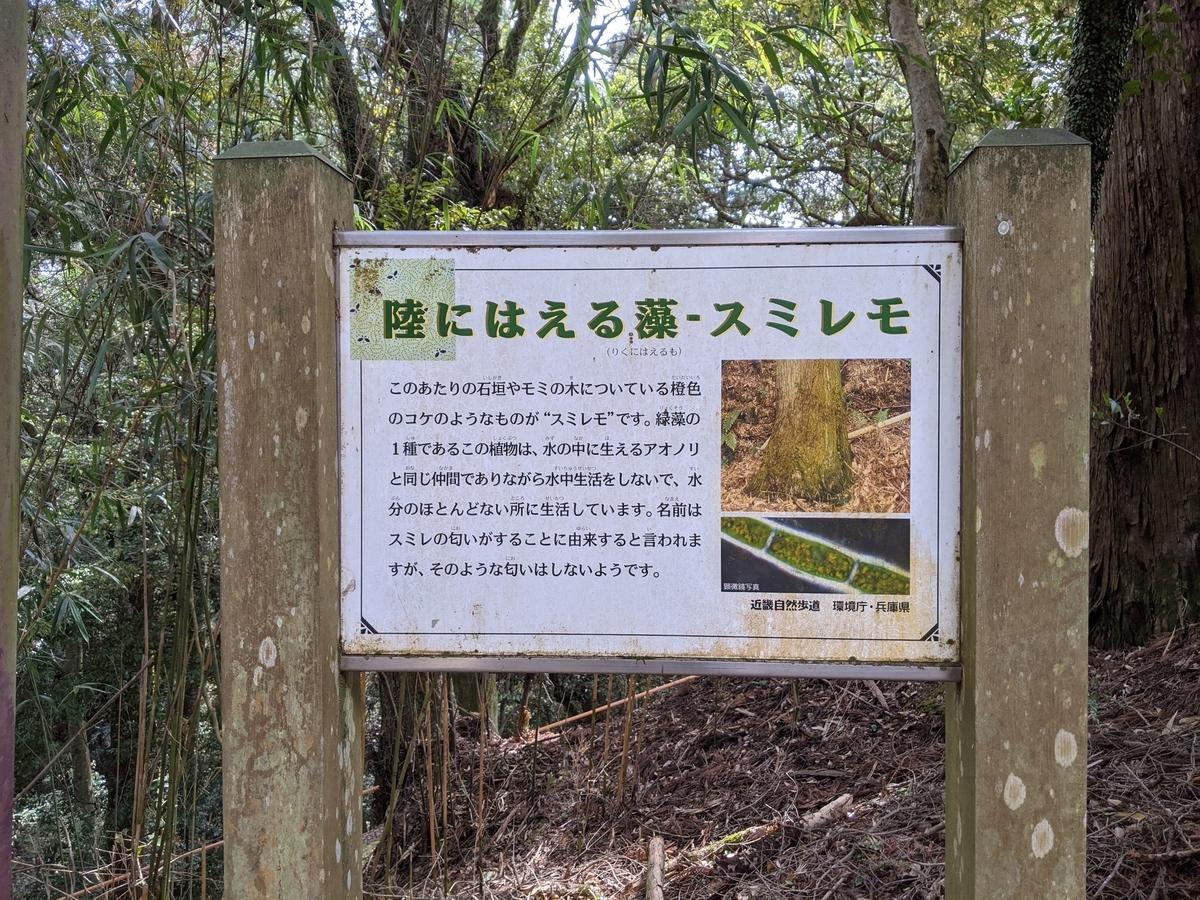 f:id:nanbo-takayama:20210619104032j:plain