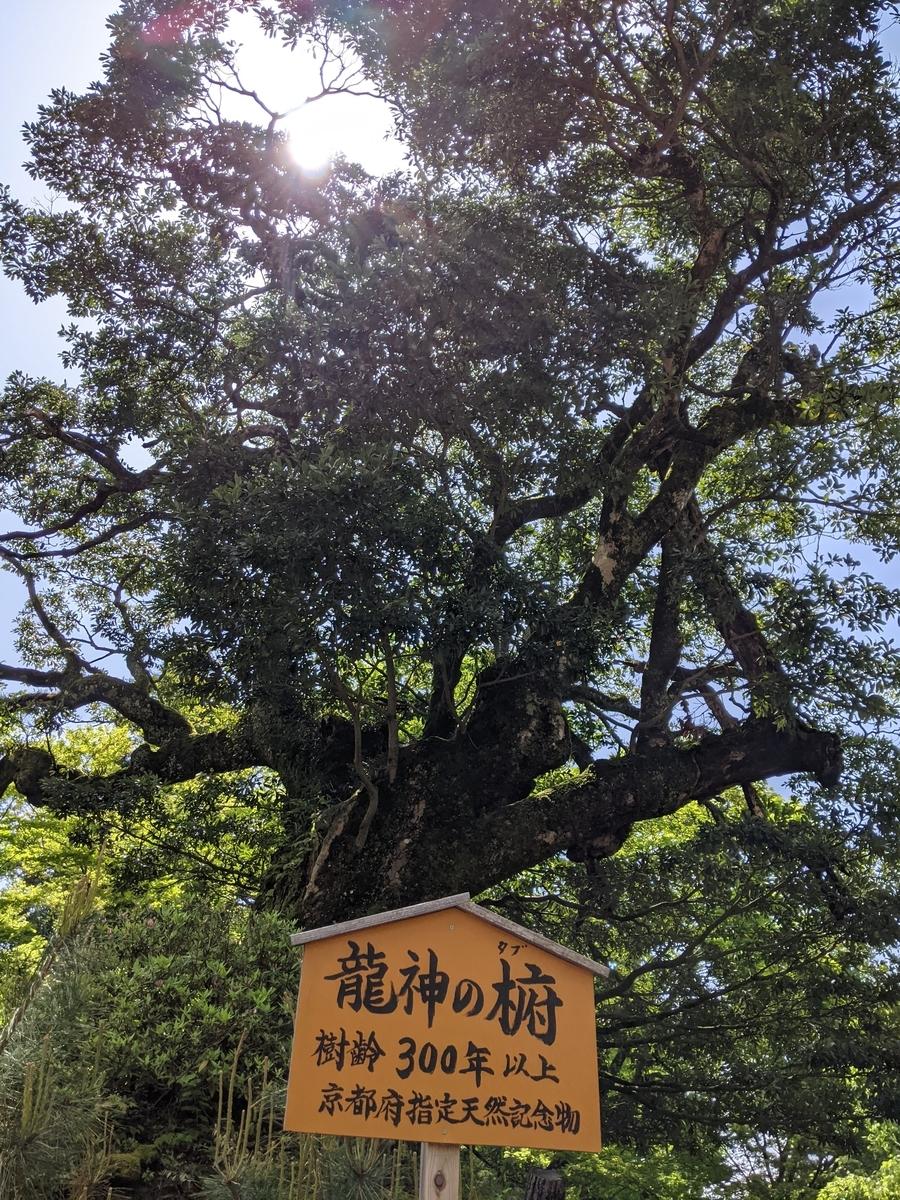 f:id:nanbo-takayama:20210623171753j:plain