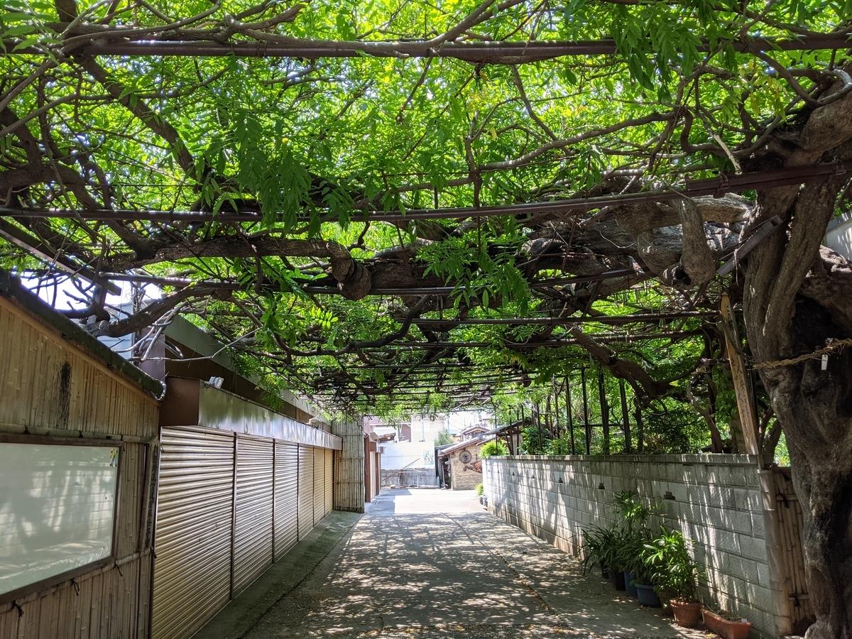 f:id:nanbo-takayama:20210627134747j:plain