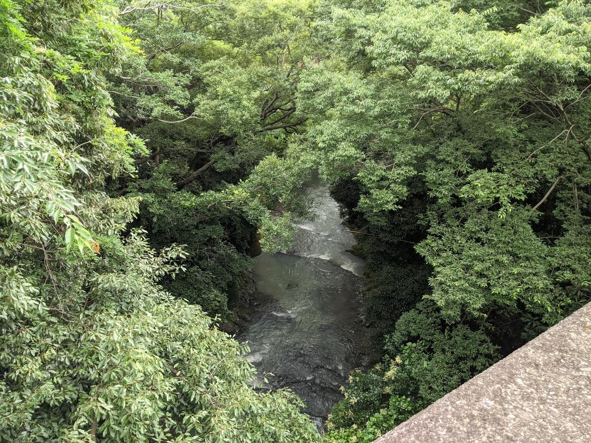 f:id:nanbo-takayama:20210710105614j:plain