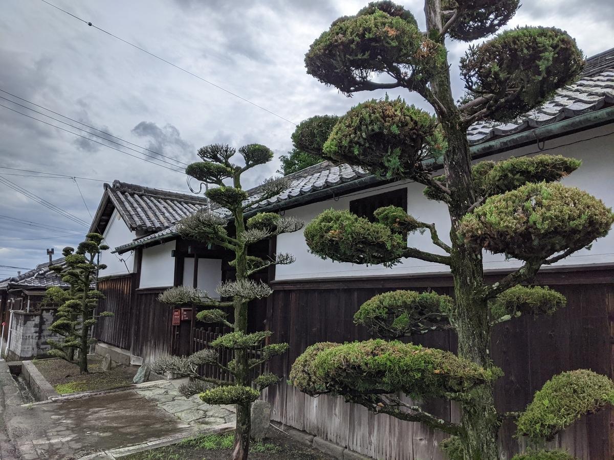 f:id:nanbo-takayama:20210712160453j:plain