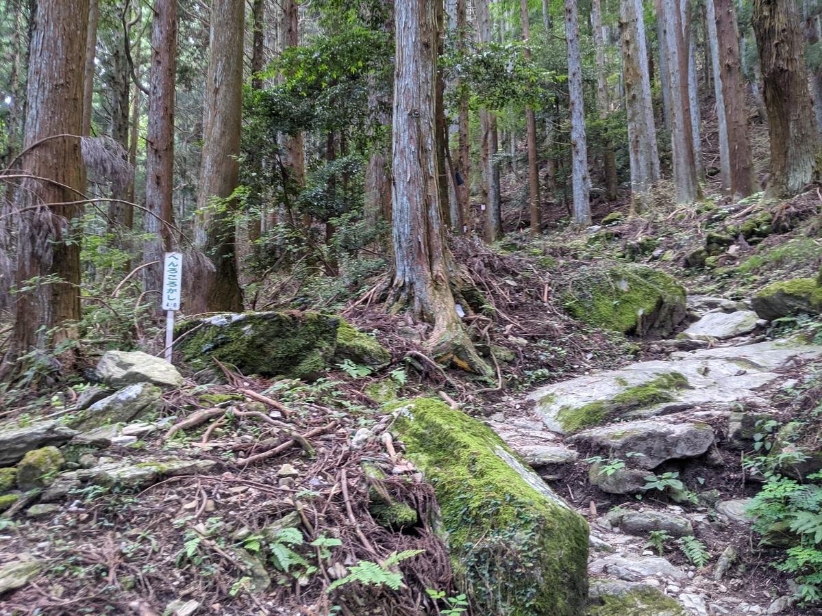 f:id:nanbo-takayama:20210922113303j:plain