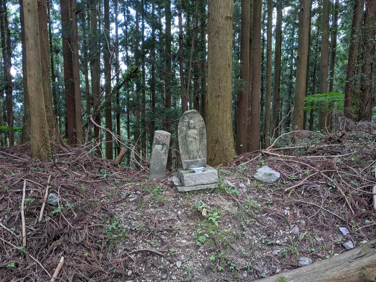 f:id:nanbo-takayama:20210922132659j:plain