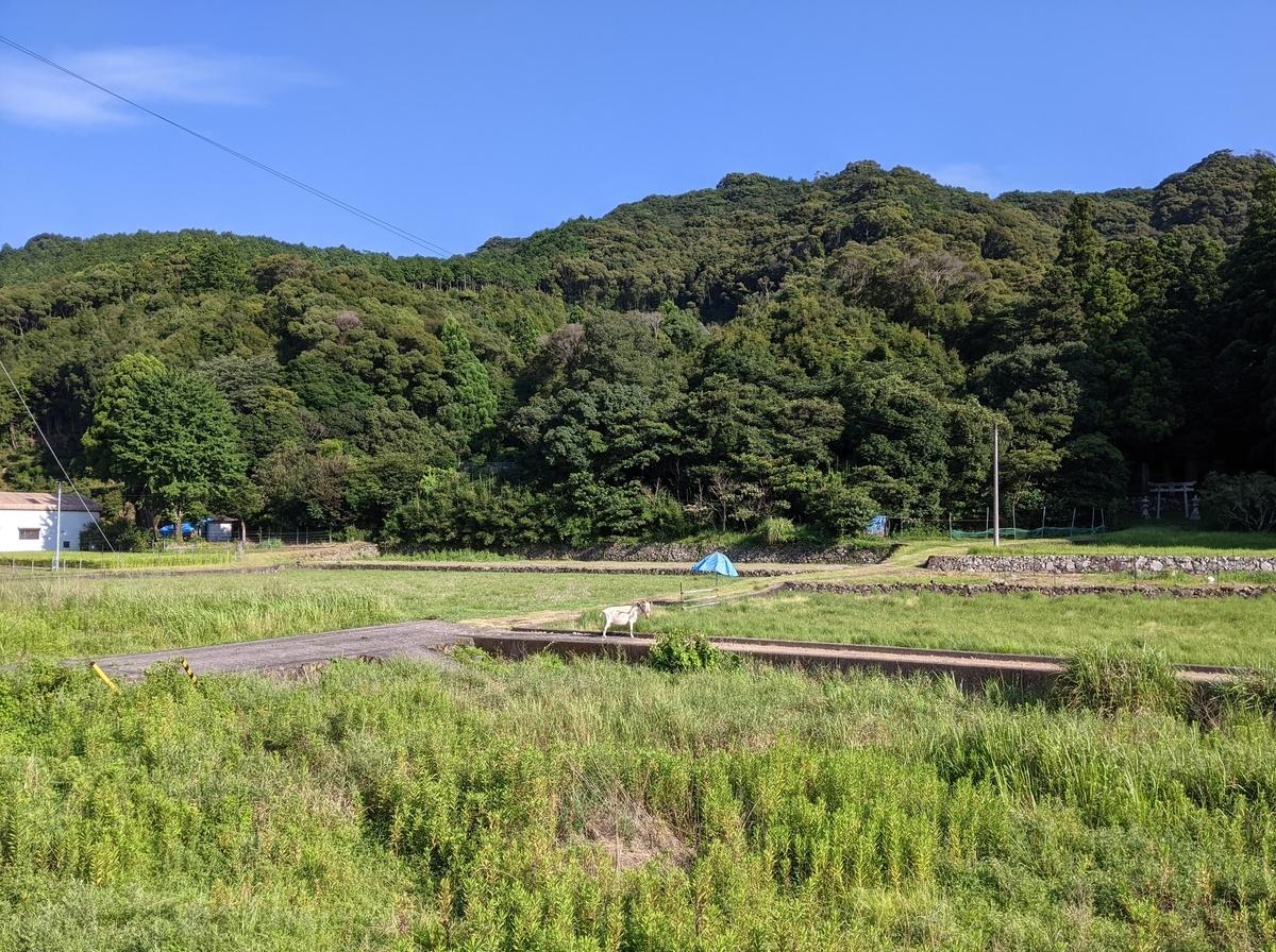 f:id:nanbo-takayama:20211009110541j:plain