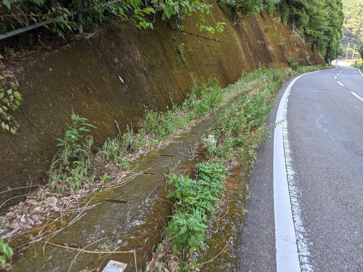 f:id:nanbo-takayama:20211009113927j:plain