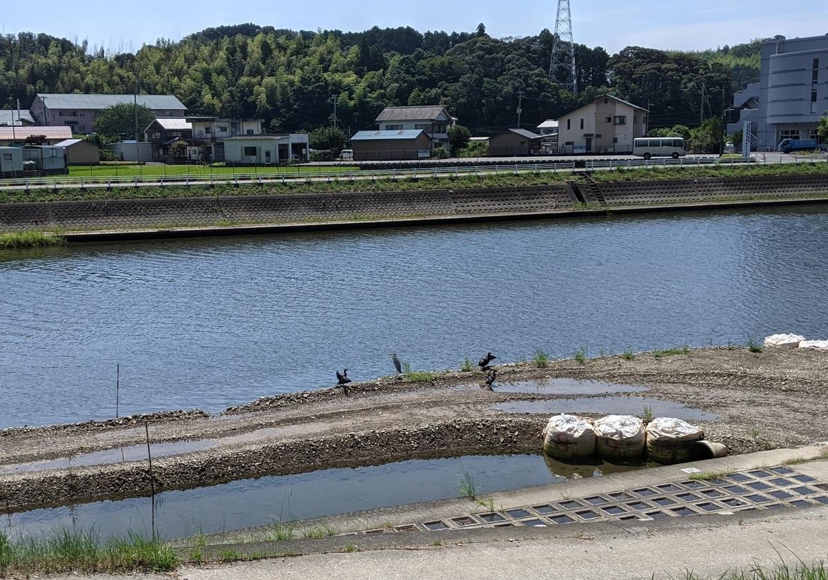 f:id:nanbo-takayama:20211009134230j:plain