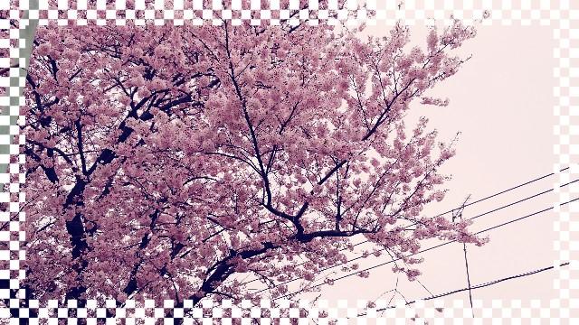 f:id:nanbyou:20170410193308j:image