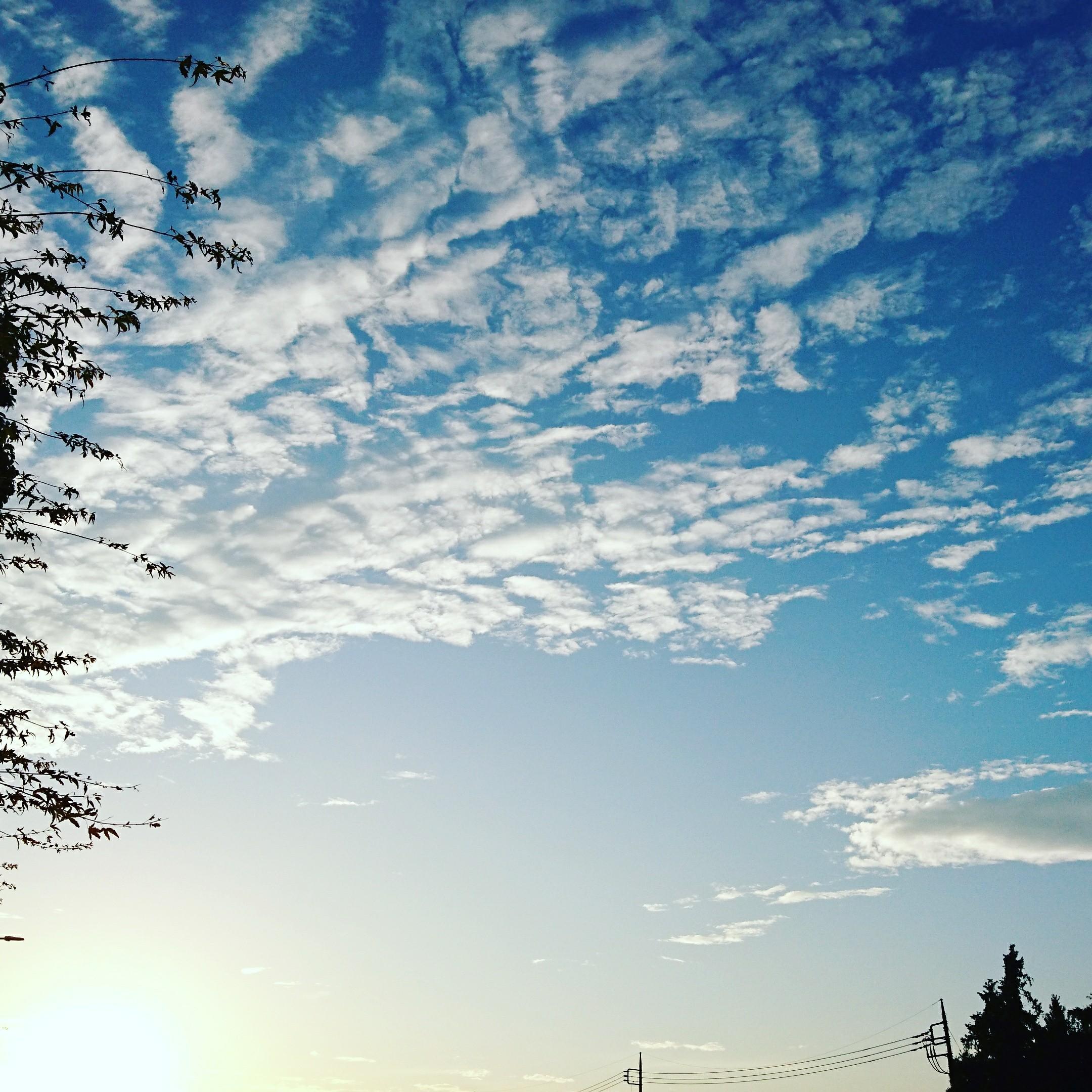 f:id:nanbyou:20171103235226j:image