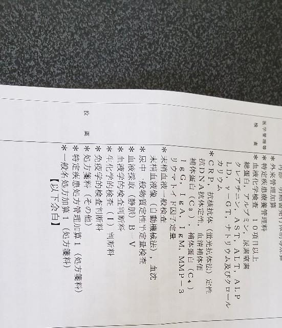 f:id:nanbyou:20180525200112j:image