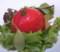セレブ・デ・トマトの赤坂店 千葉県産のマルトマトのサラダ
