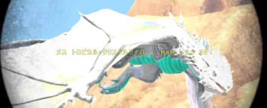 f:id:nanimo745:20210116223632j:plain