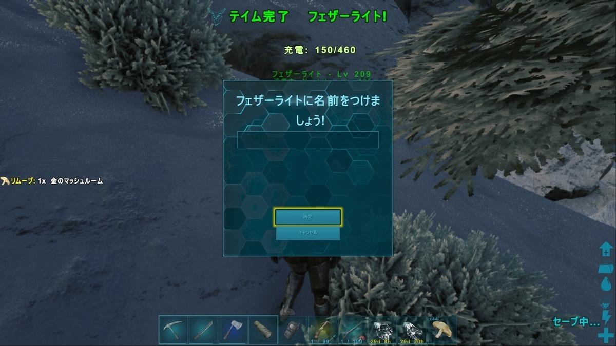 f:id:nanimo745:20210124231147j:plain
