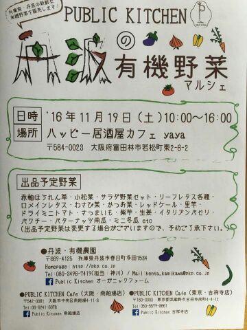 f:id:naniwa-hanamaru-chukichi:20161107125941j:plain