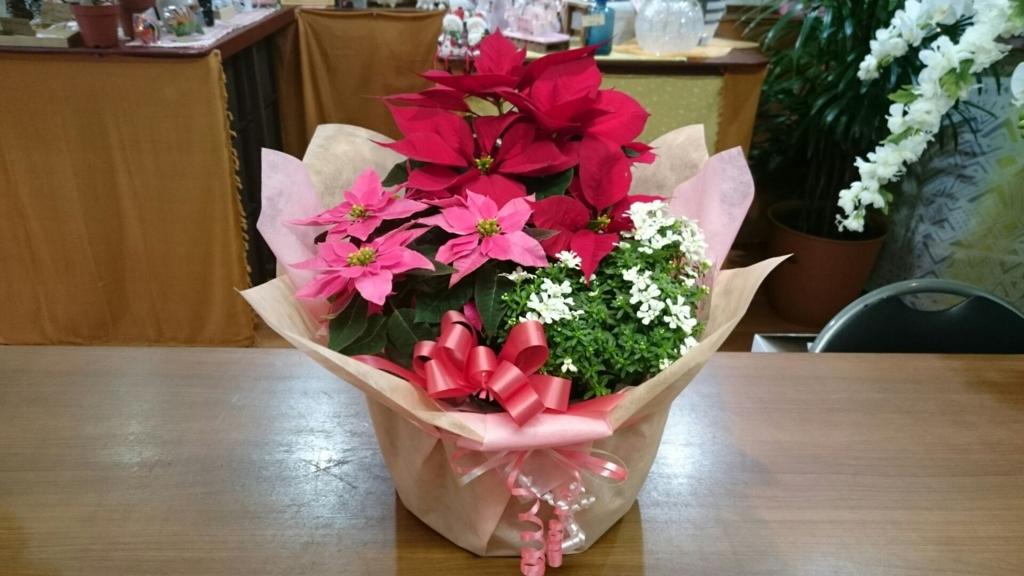 f:id:naniwa-hanamaru-chukichi:20161204184824j:plain