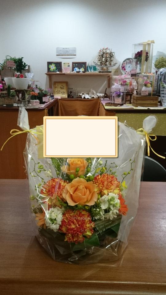 f:id:naniwa-hanamaru-chukichi:20170412193133p:plain