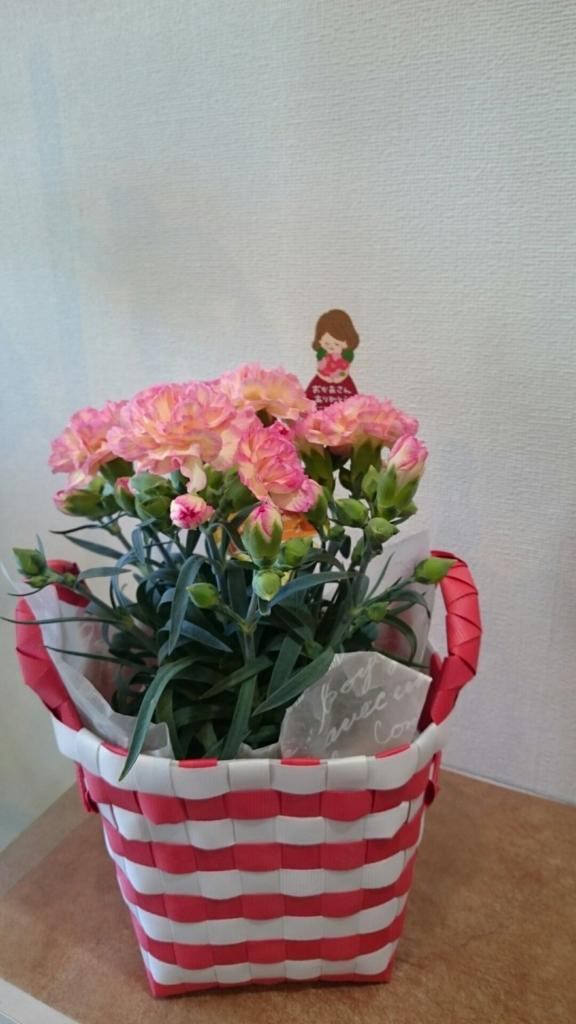 f:id:naniwa-hanamaru-chukichi:20170508231139j:plain