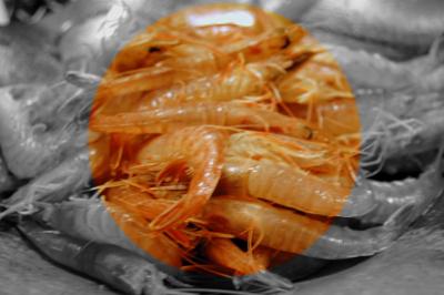 f:id:naniwaotoko:20100221010016j:image