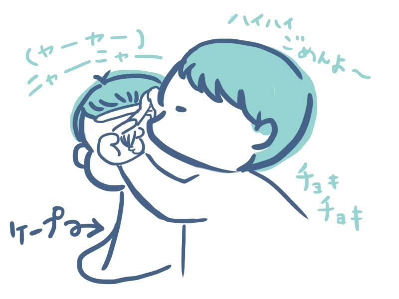 f:id:nankanoyotyu:20171030182424j:plain