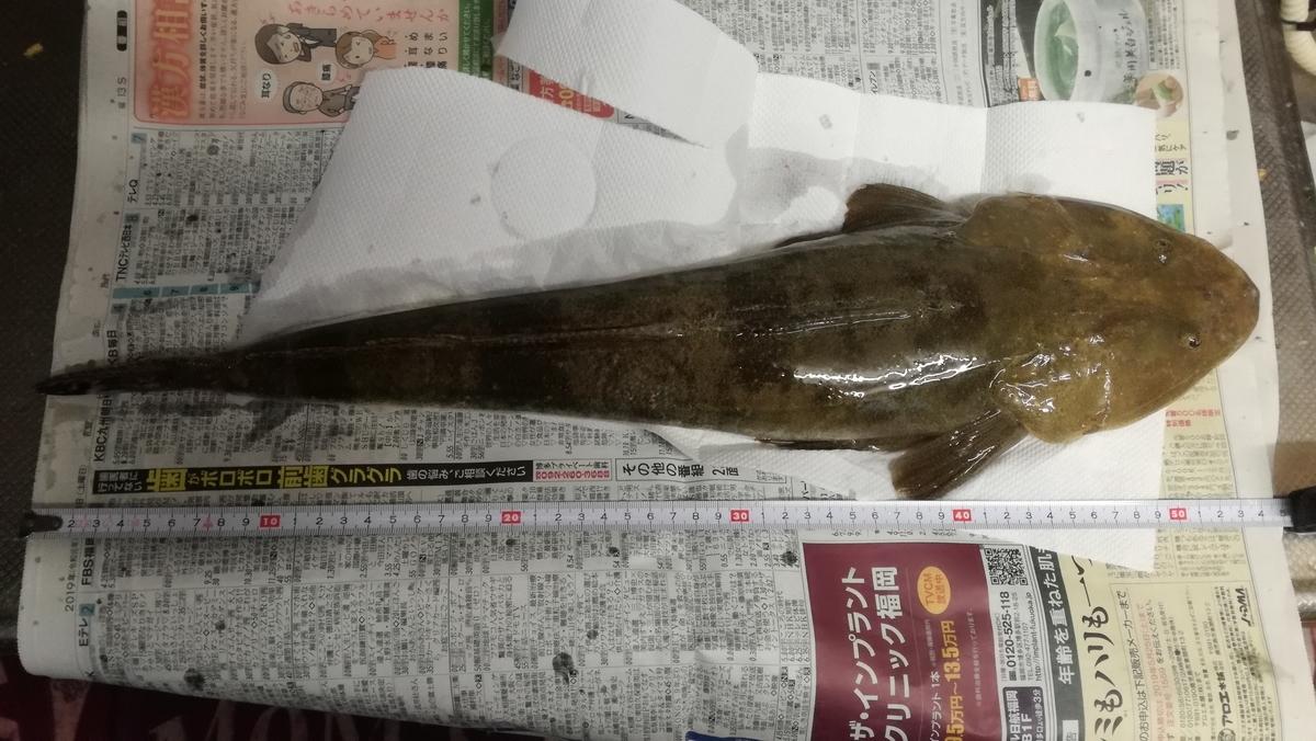 f:id:nannjakunaifu:20190519225717j:plain