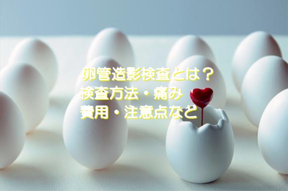 f:id:nano-hana01:20191121135123p:plain