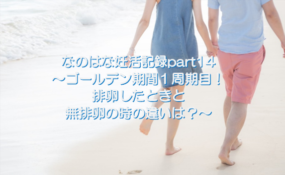 f:id:nano-hana01:20200110101701p:plain
