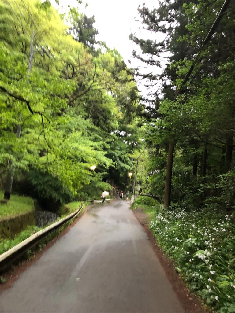 f:id:nanoha_furuki:20190506011700j:image